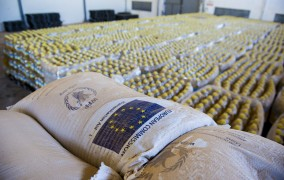 World Food Programme warehouse containing rice, cereal, pulses, and cooking oil